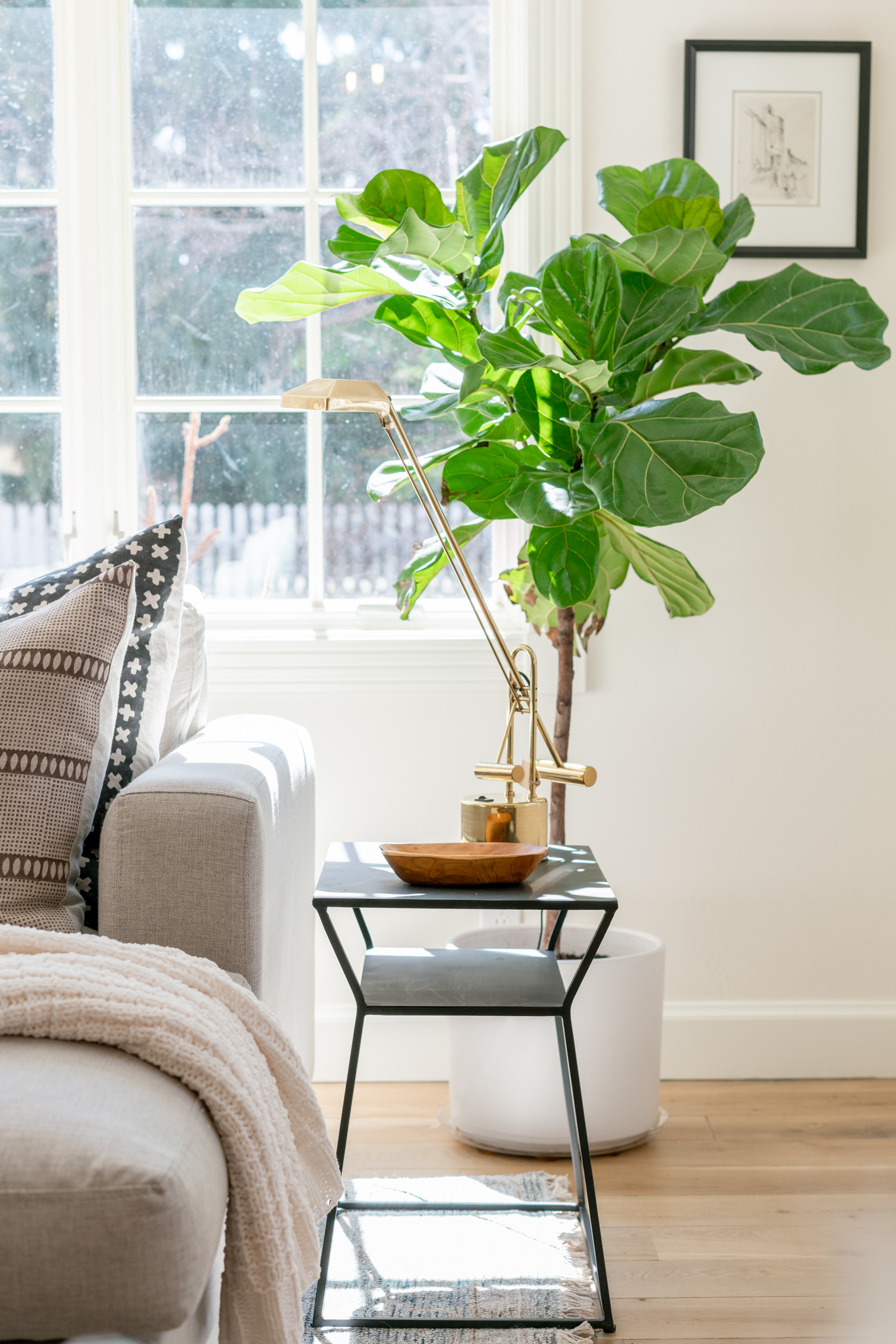 vertical shot of plant and side table with lamp